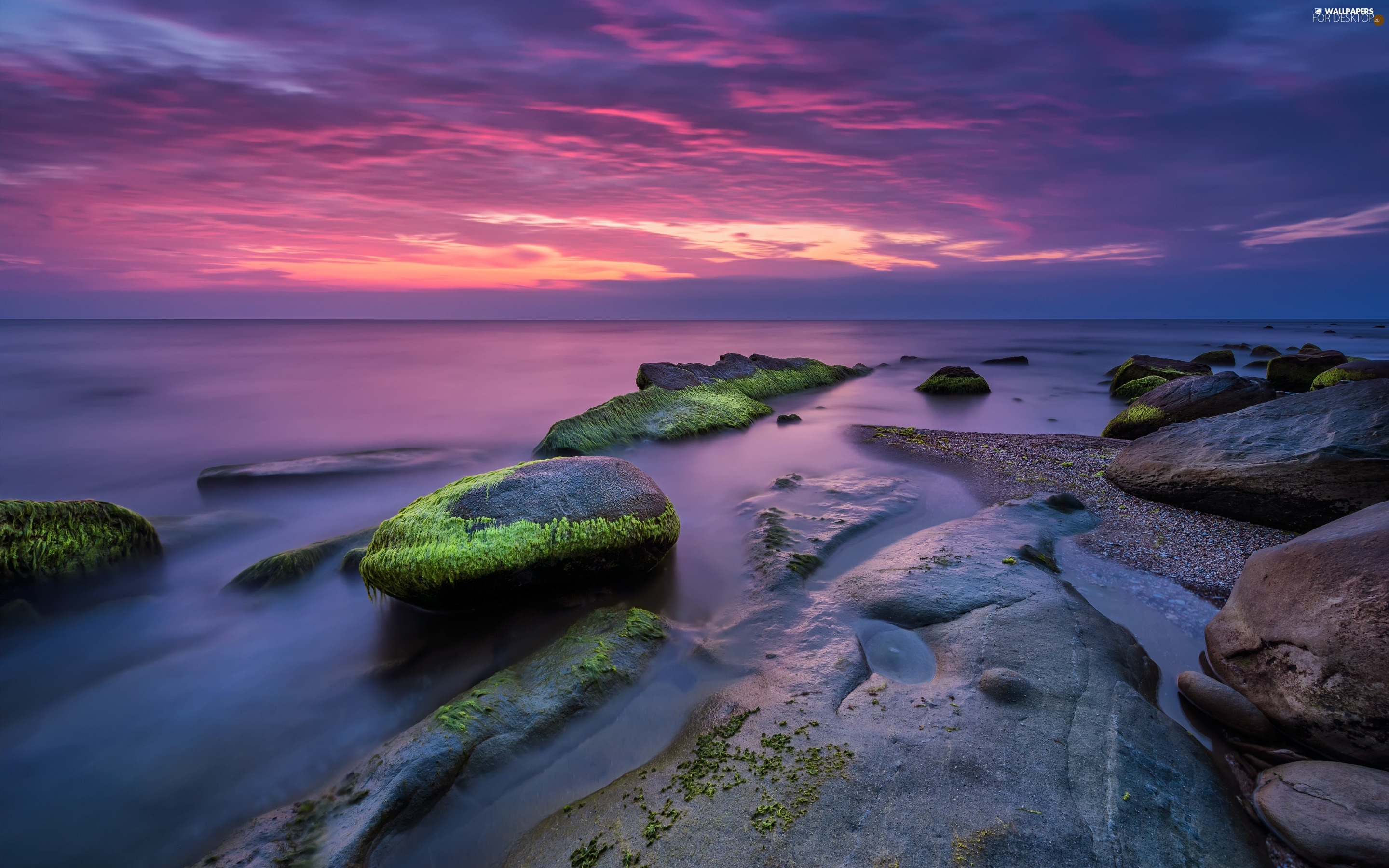 sea, Stones, Great Sunsets, mossy