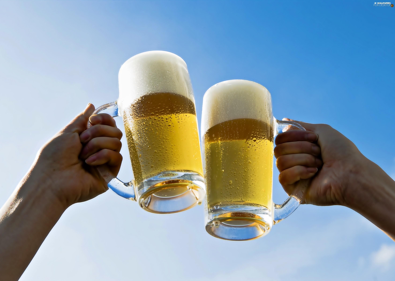 toast-hands-beer-mugs.jpg
