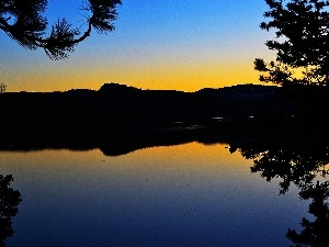 Loon, branch pics, Great Sunsets, lake, California, Mountains