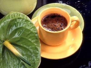 Anturium, cup, coffee, green ones