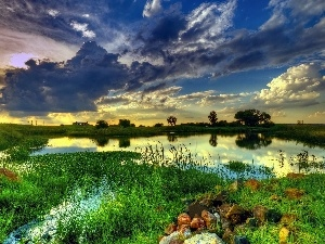 lake, clouds, west, Meadow, sun