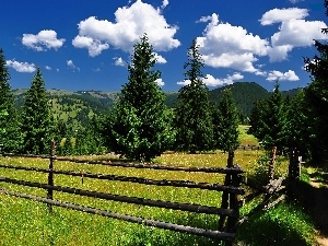 clouds, luminosity, sun, flash, ligh, fence, woods, Mountains, medows, shadow, Spruces