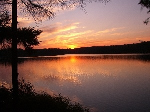 trees, Great Sunsets, lake