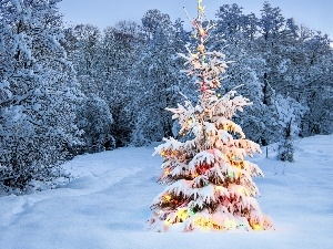 Spruces, christmas tree, winter, decorated