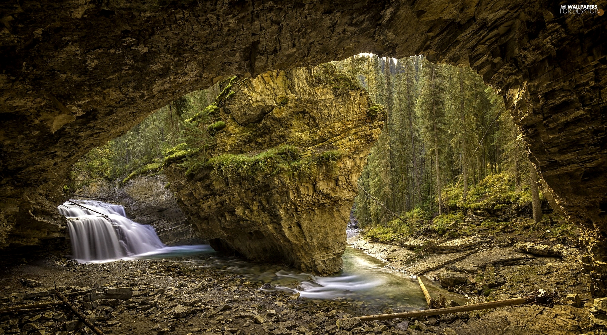 Johnston Canyon, cave, viewes, Rocks, trees, Banff National Park, Canada, waterfall