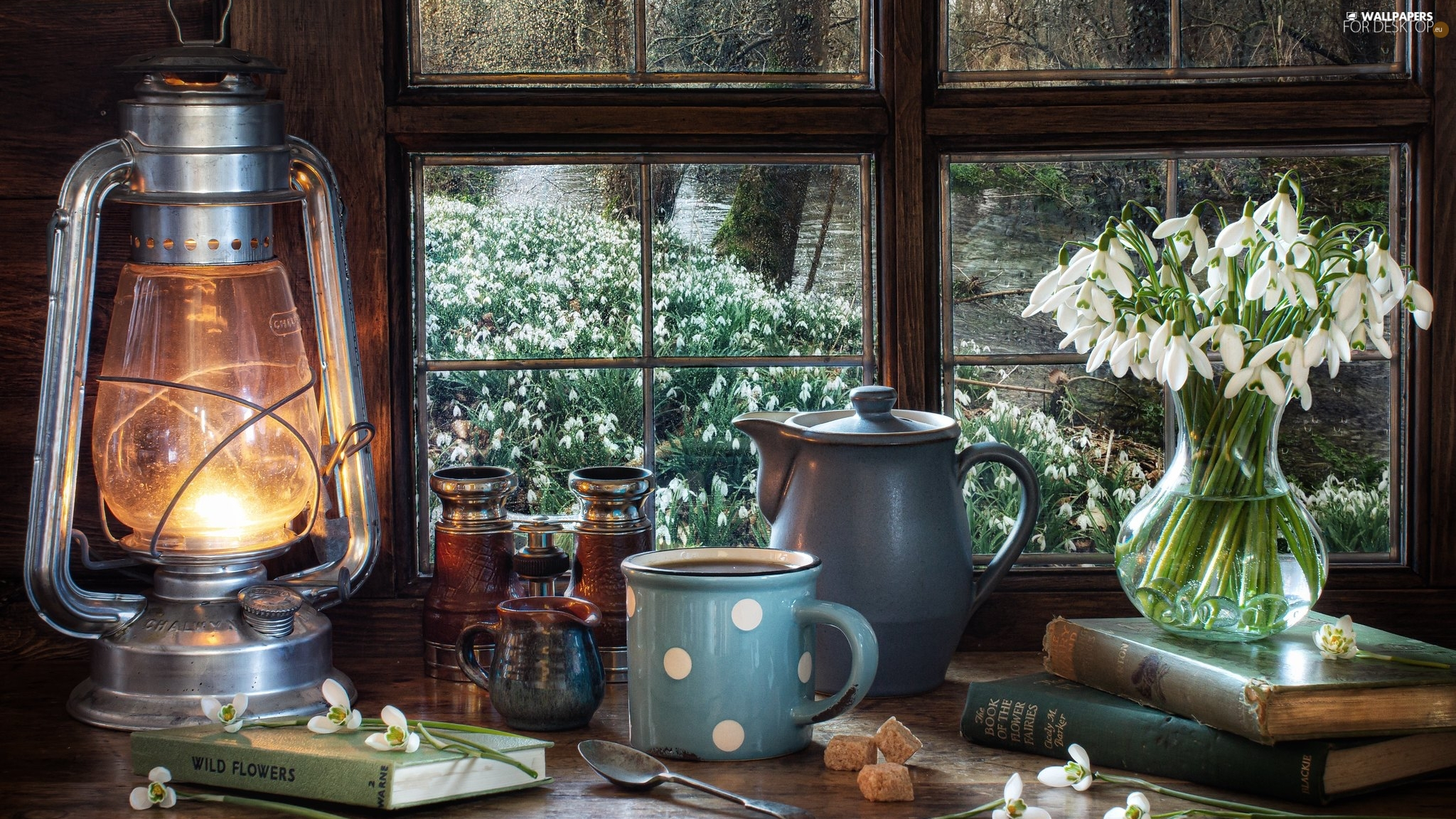 Window, snowdrops, binoculars, Cup, jug, Lamp, composition, Book