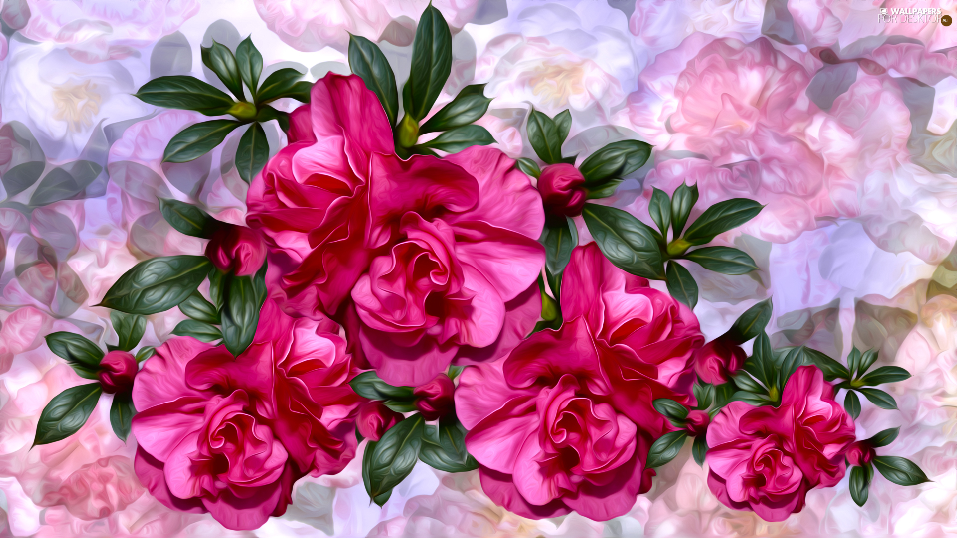Flowers, Colorful Background, graphics, Camellias