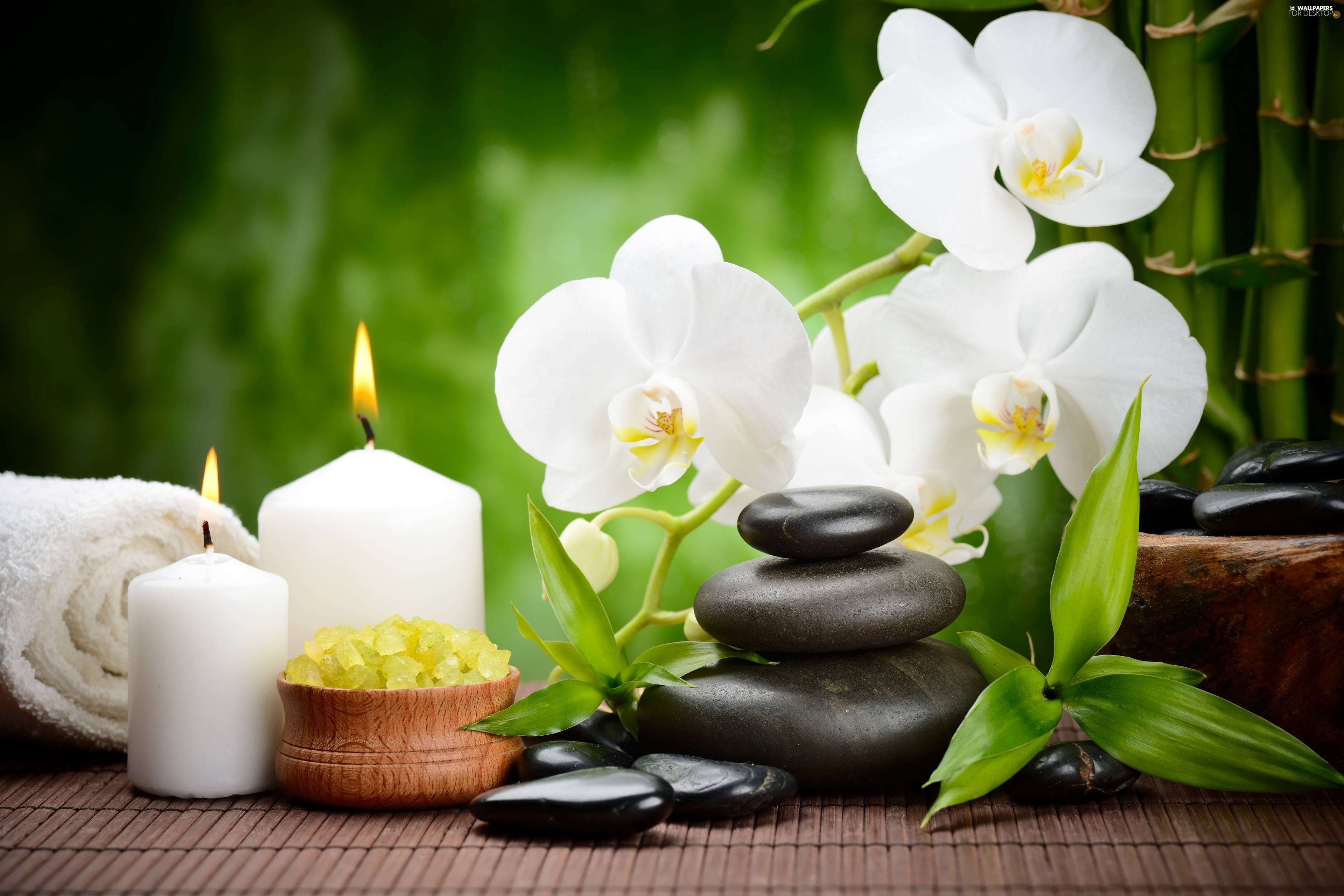 Spa, orchids, salt, composition, Flowers, Stones, Candles