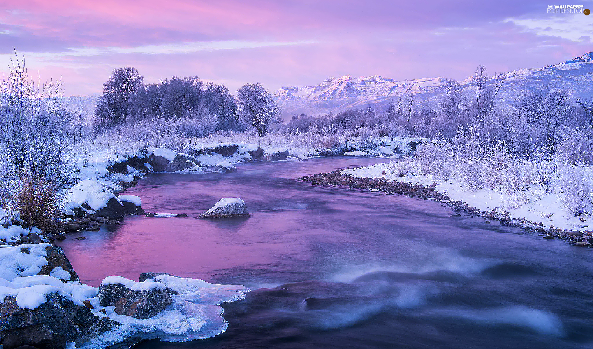 River, winter, viewes, Great Sunsets, trees, snow