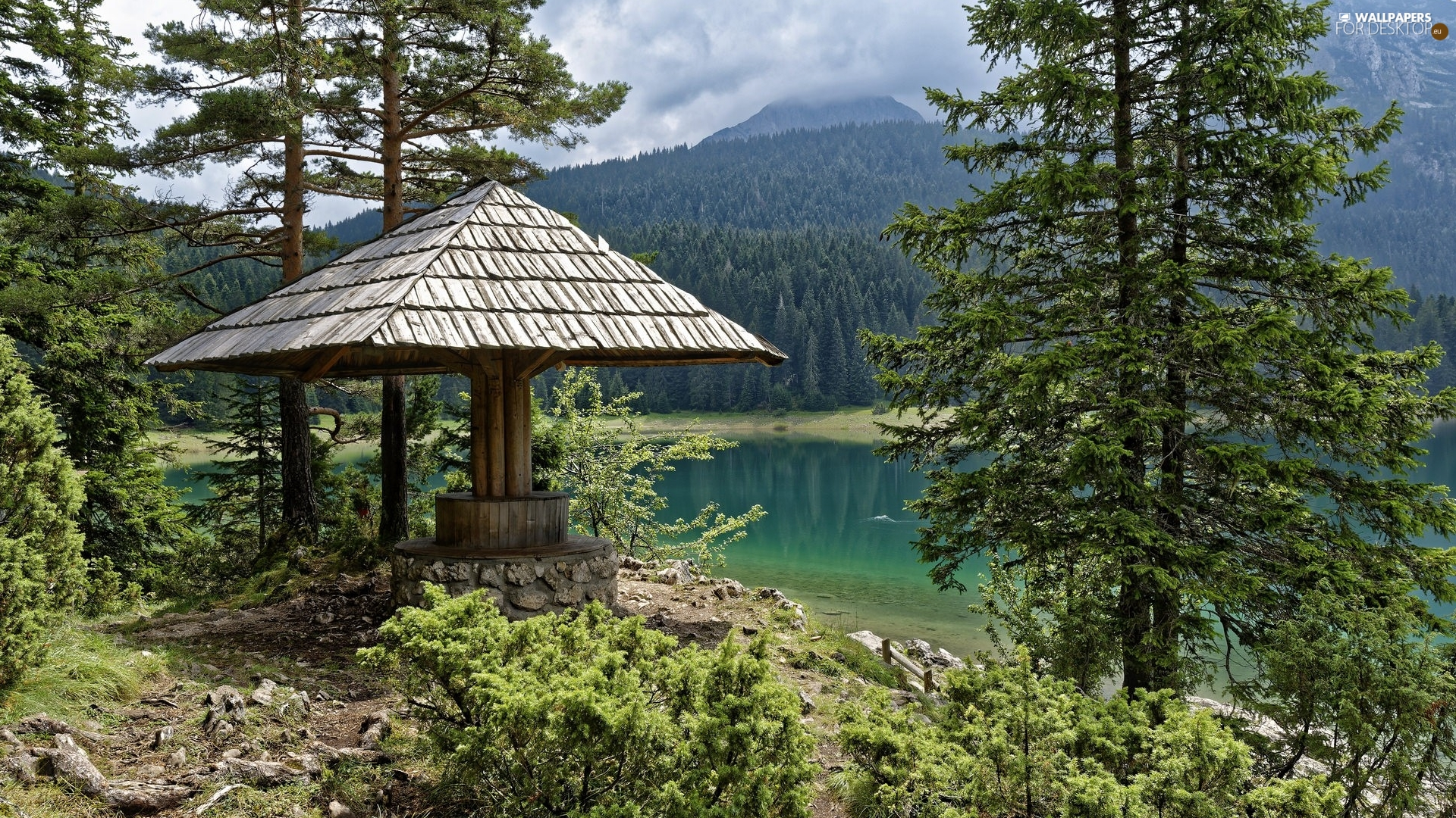 trees, arbour, woods, lake, viewes, Mountains