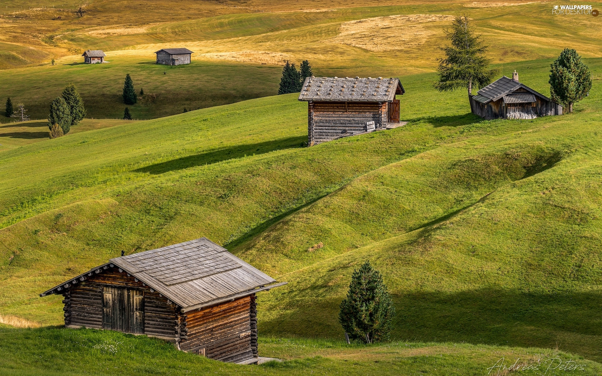 Val Gardena Valley, Seiser Alm Meadow, The Hills, medows, viewes, Italy, Houses, trees, wood