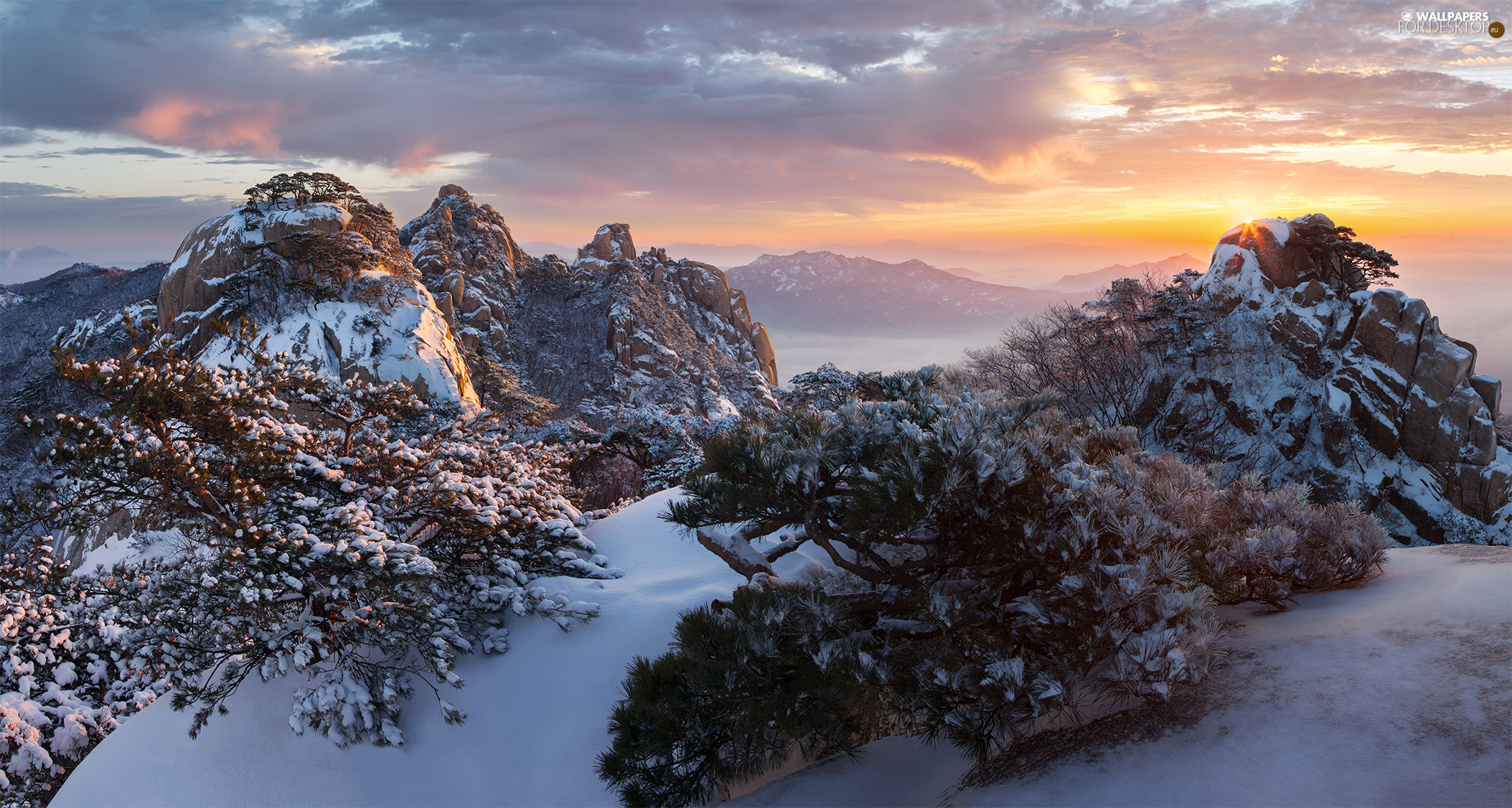Fog, VEGETATION, Sunrise, rocks, Bukhansan National Park, clouds, viewes, winter, South Korea, trees, Mountain Dobongsan, Mountains