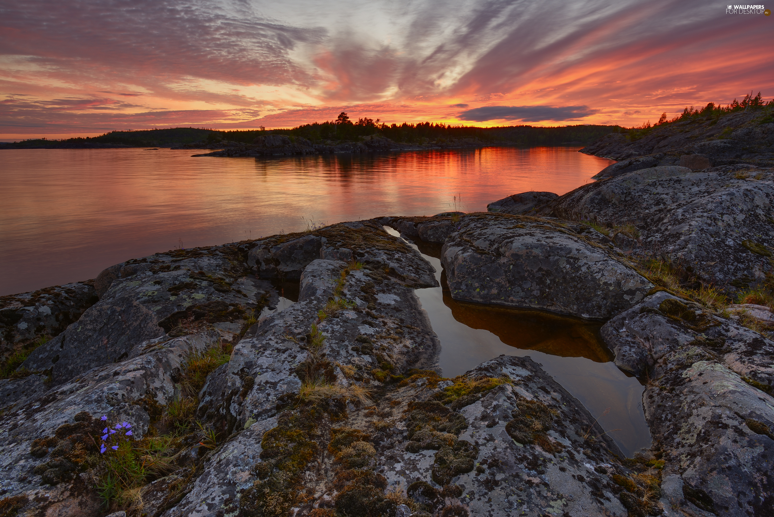 rocks, Lake Ladoga, viewes, Great Sunsets, trees, Russia