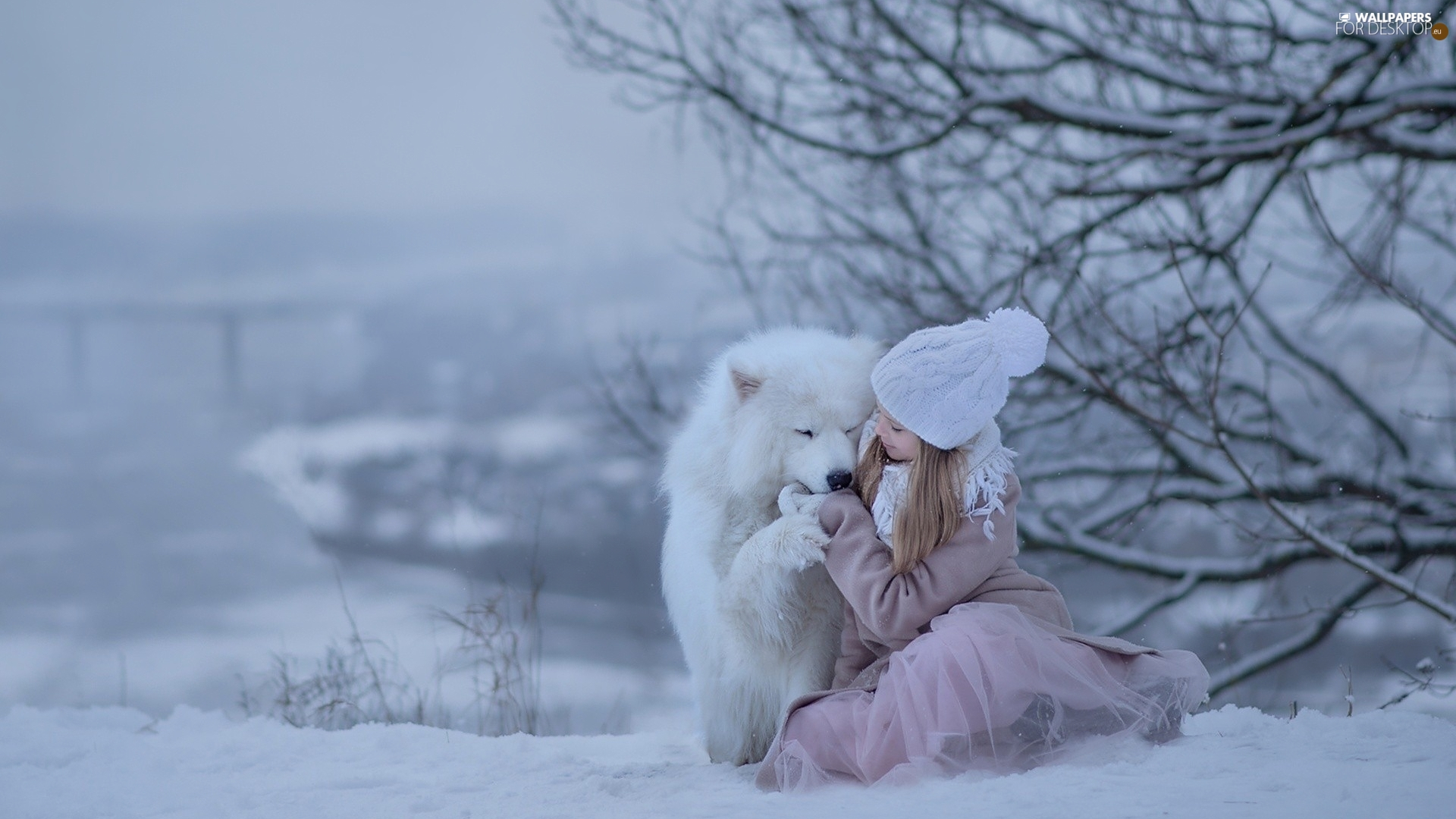 winter, girl, dog, Samojed, snow, Hat
