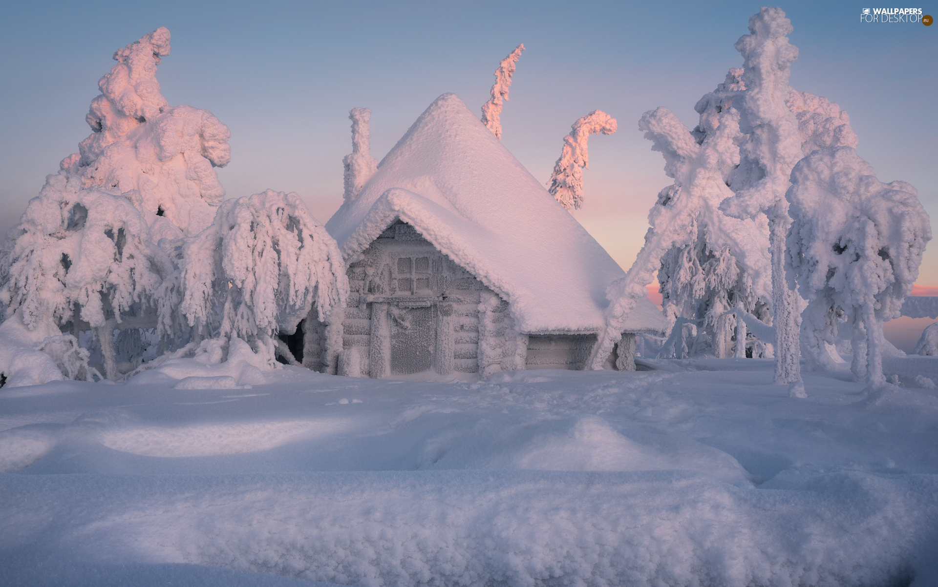 house, winter, viewes, snow, trees, snowy