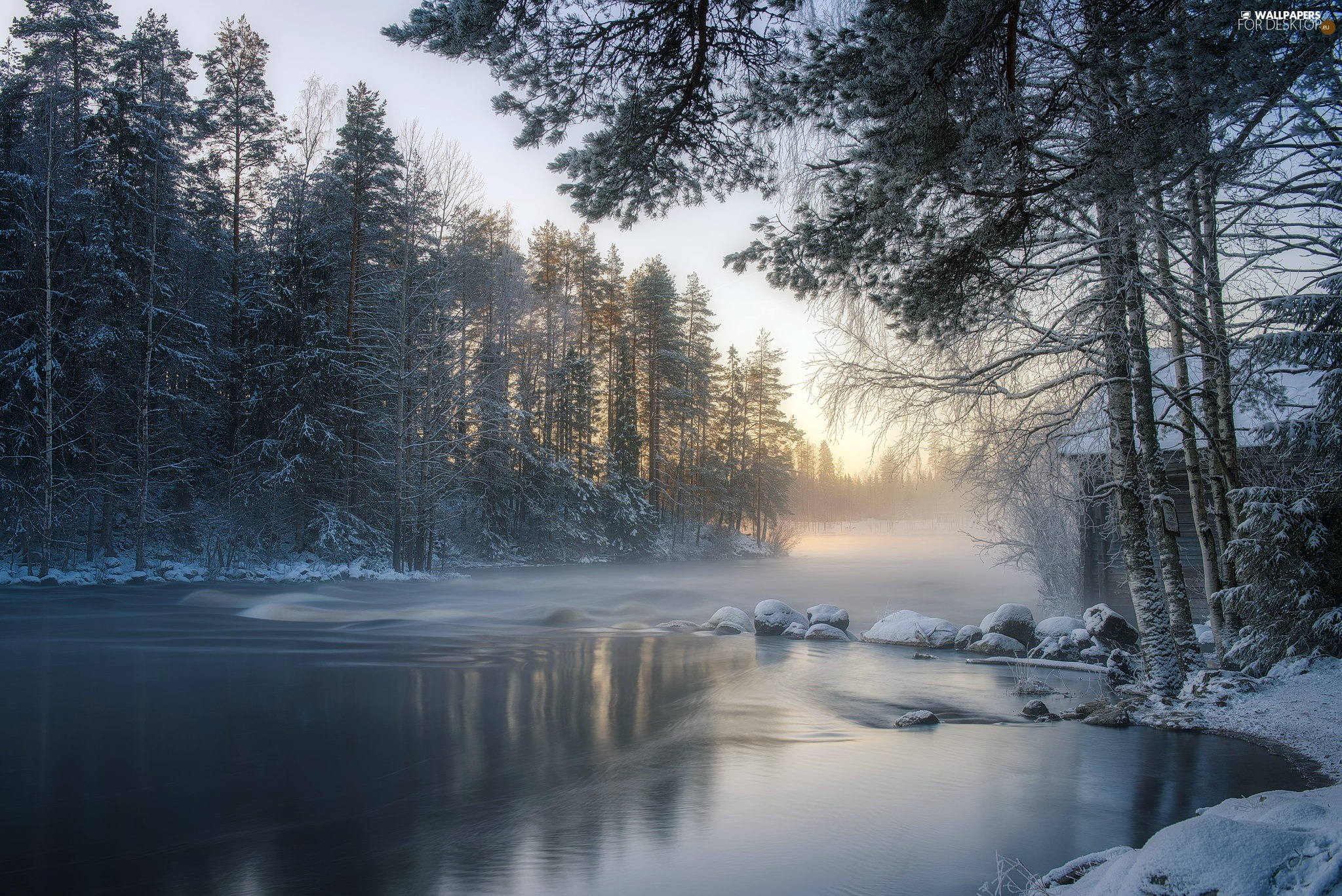 forest, winter, viewes, Sunrise, trees, River