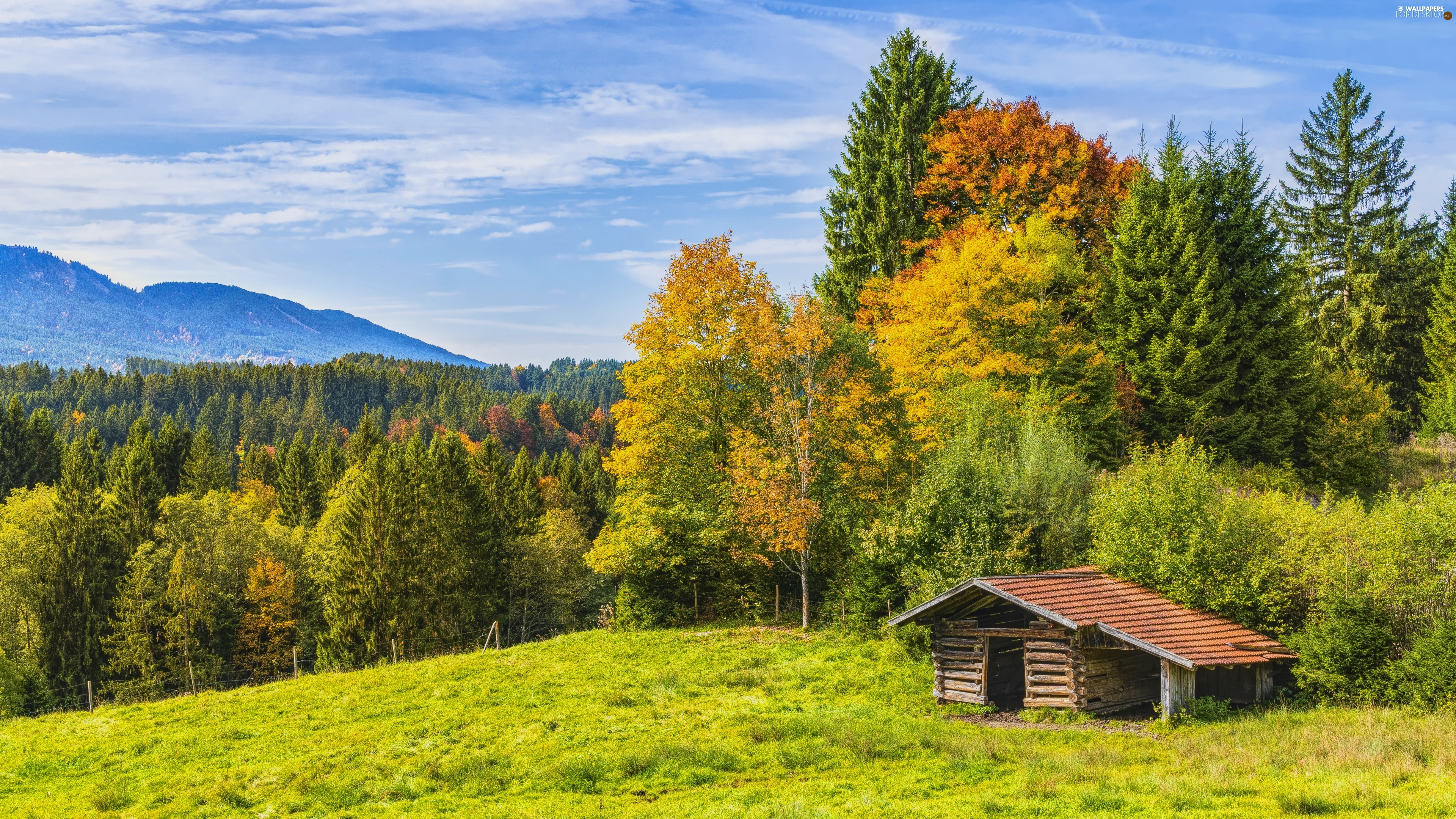 viewes, Mountains, cottage, trees, autumn, Wooden, hut