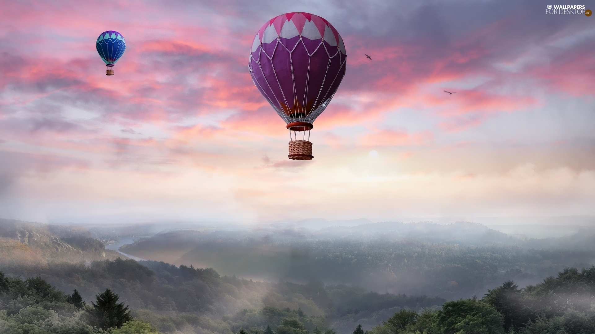 viewes, Mountains, Fog, trees, Balloons, VEGETATION, birds