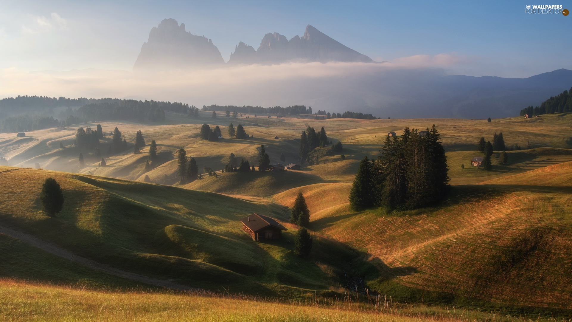 Houses, Sassolungo Mountains, The Hills, viewes, Val Gardena Valley, Seiser Alm Meadow, Dolomites, Italy, trees, Fog