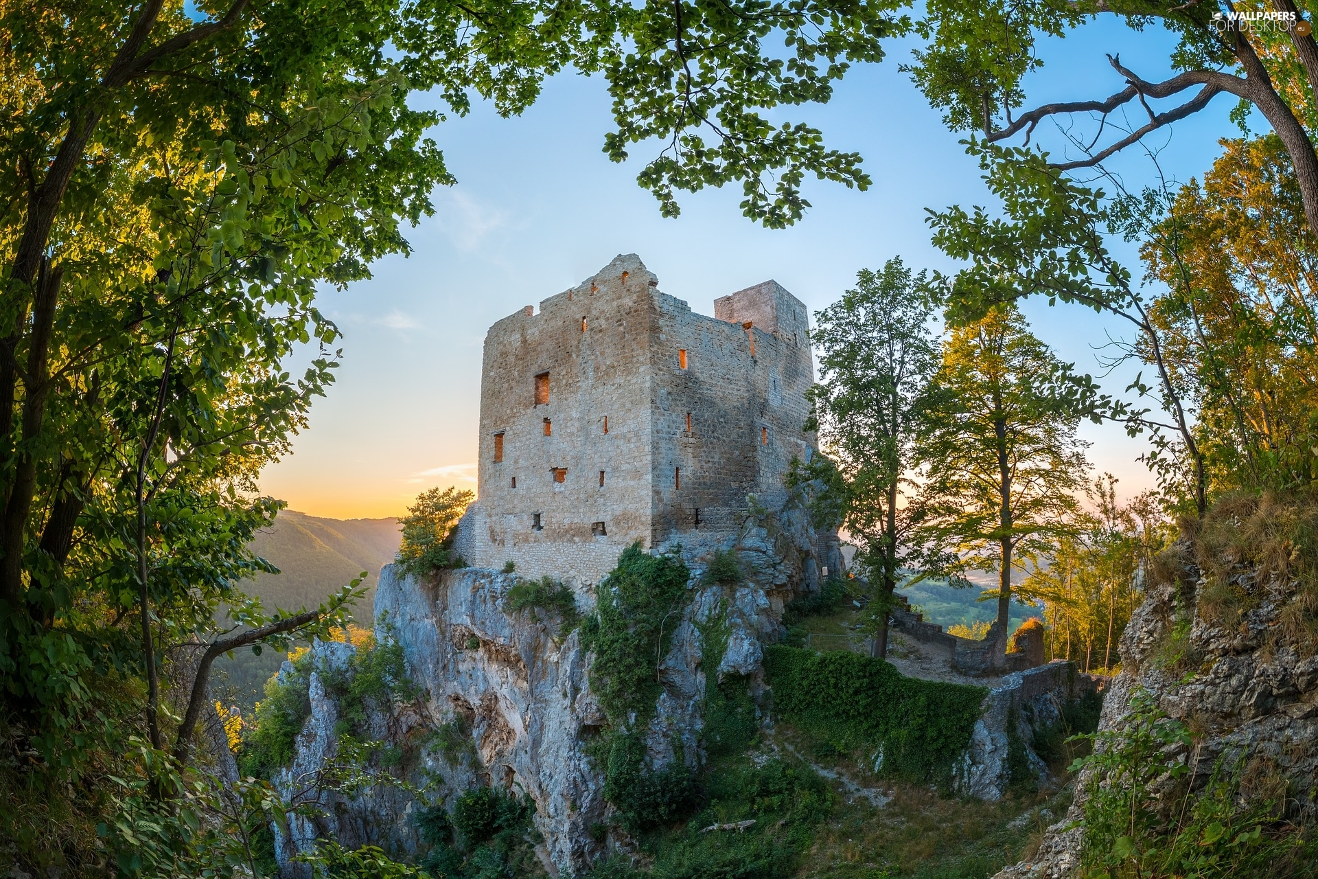 trees, viewes, Castle, ruins, Rocks