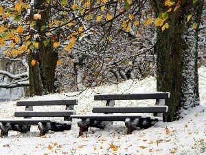 bench, winter, trees, viewes, Park