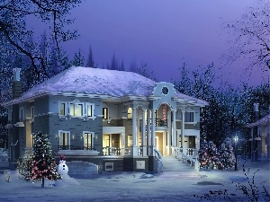 birth, christmas tree, winter, God, house