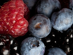 blueberries, raspberry, blackberry