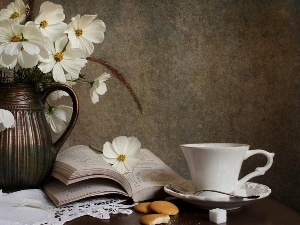 Book, cup, Cosmos, bowl, White