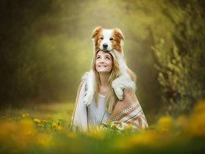 Border Collie, Women, fuzzy, background, Meadow, dog