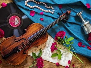 CD, composition, Tunes, roses, violin