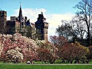 Park, Cardiff, trees, wales, Castle, flourishing, viewes