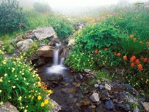 waterfall, stone, Flowers, stream