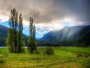Fog, clouds, woods, River, Mountains