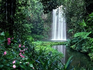 forest, waterfall, Flowers