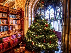 interior, christmas tree, gifts, Books