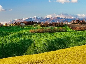 Spring, Mountains, Italy, field
