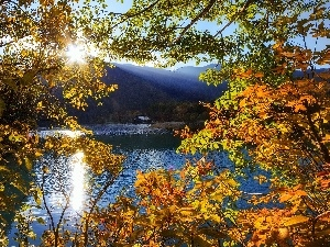 trees, Mountains, rays of the Sun, autumn, viewes, lake