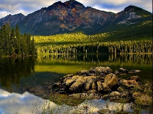 lake, Stones, Mountains, forest