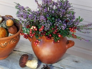 pots, mushrooms, Flowers