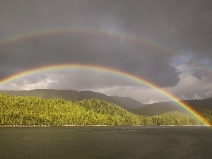 landscape, forest, rainbows, lake