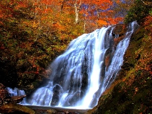 River, waterfall, autumn