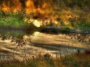 Big Fire, forest, River