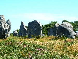 rocks, summer, Meadow