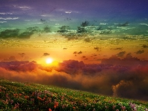 sun, Meadow, clouds, west, color