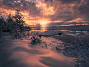 lake, Ringerike, viewes, winter, Norway, trees, Great Sunsets