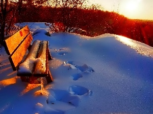 Bench, snow, viewes, traces, winter, trees, Bush