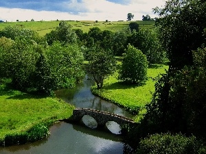 trees, viewes, River, bridge, field