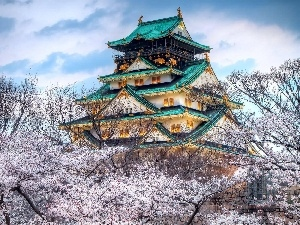 trees, viewes, house, flourishing, japanese
