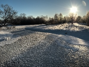 sun, Frozen, trees, viewes, Sky, River