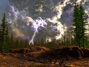 trees, viewes, lightning, high, Sky